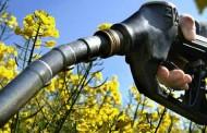 El Gobierno aprueba medidas para fomentar el uso de biocarburantes y  asegurar así el cumplimiento de los objetivos contra el cambio climático