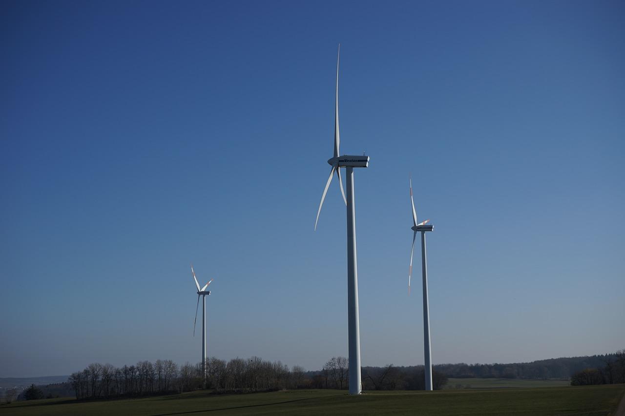 Celebrada la primera subasta para introducir nueva energía renovable en el sistema eléctrico