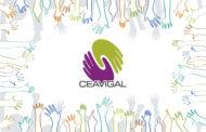 Nueva web de Ceavigal. www.ceavigal.es