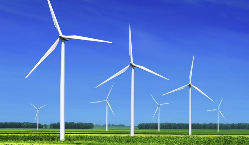 Forestalia arrasa en la subasta de renovables: se adjudica 1.200 MW
